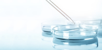 歯周病菌DNA検査